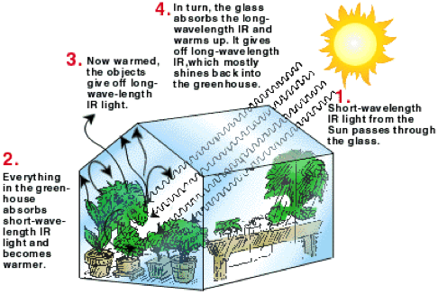 How your diy greenhouse works